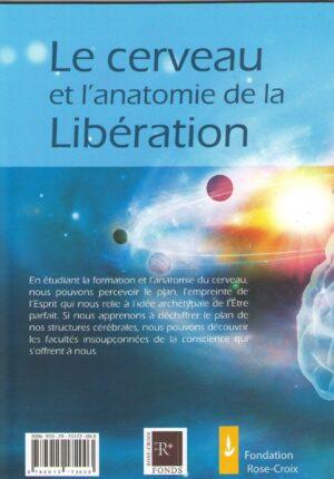 Le cerveau et l'anatomie de la Libération